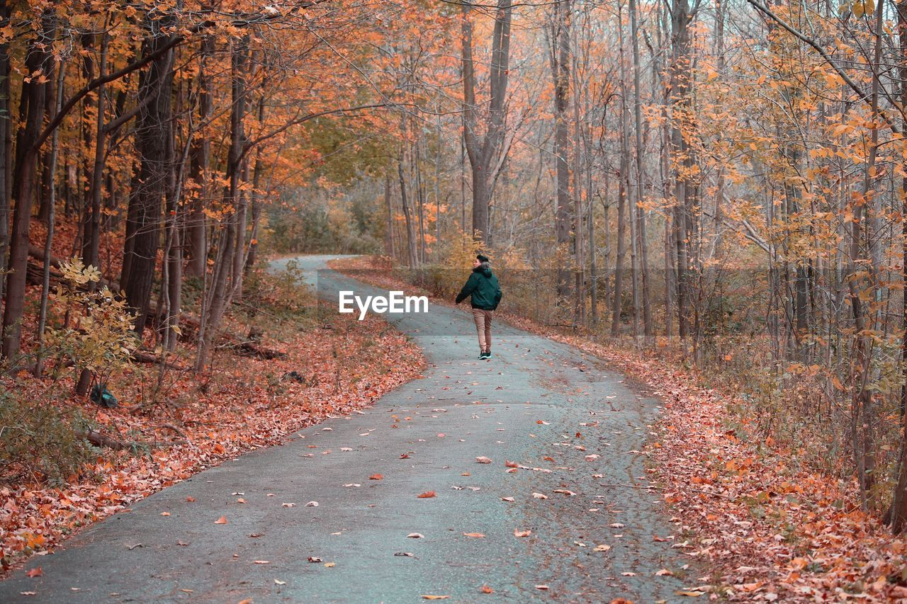 Rear View Of Man Walking On Road In Forest During Autumn