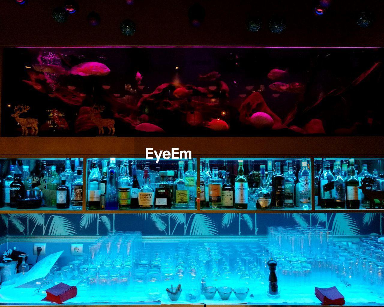 swimming pool, water, illuminated, variation, swimming, aquarium, night, indoors, no people