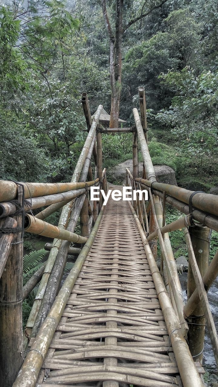 High Angle View Of Wooden Pathway Leading Towards Forest
