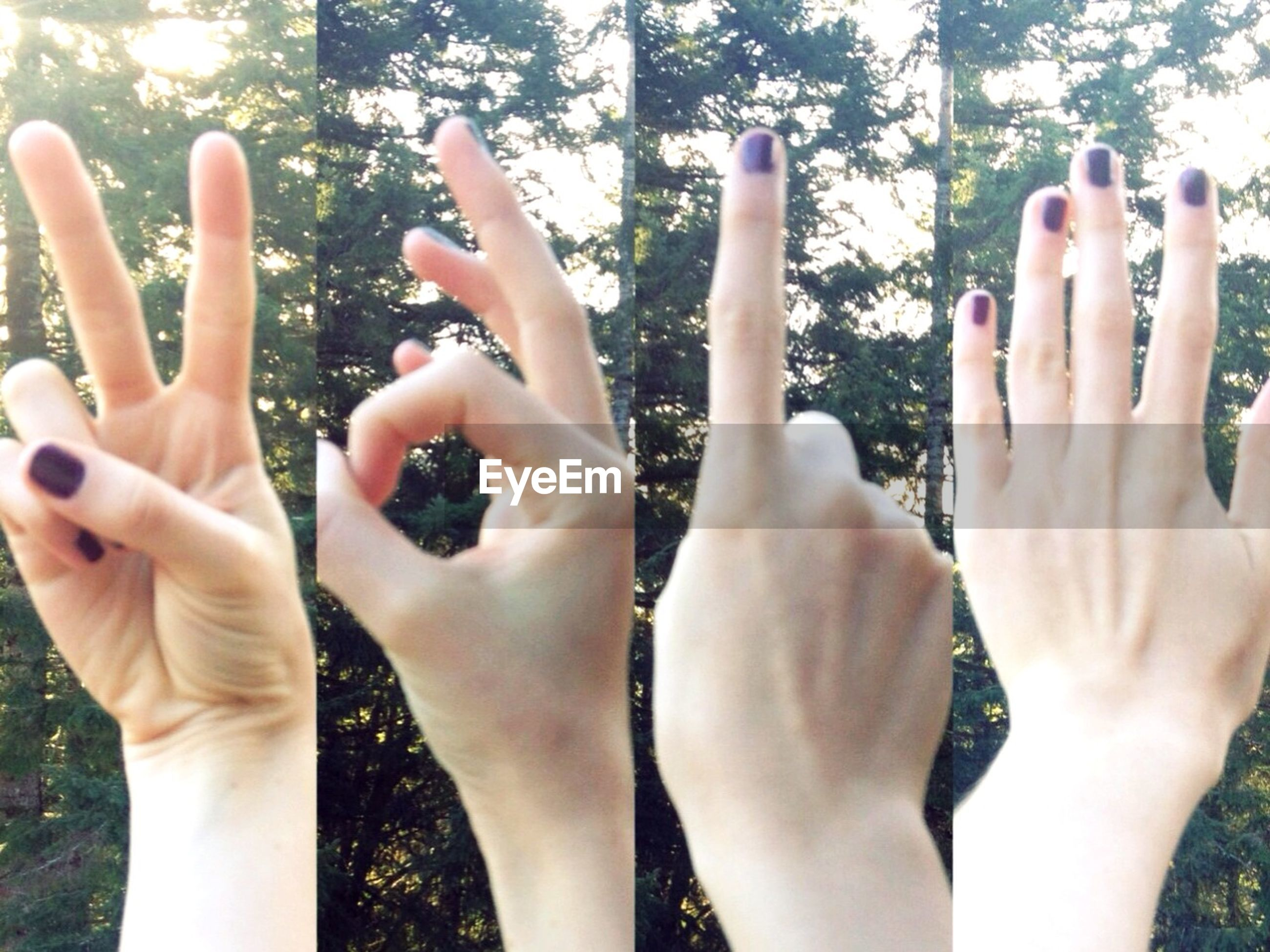 person, human finger, part of, holding, lifestyles, cropped, leisure activity, personal perspective, close-up, touching, unrecognizable person, focus on foreground, showing, day, outdoors, nail polish