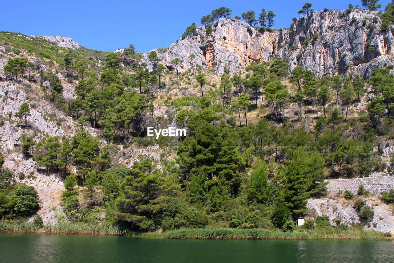 plant, tree, water, rock, mountain, beauty in nature, nature, rock formation, rock - object, growth, tranquil scene, scenics - nature, day, tranquility, solid, sky, no people, non-urban scene, outdoors, formation