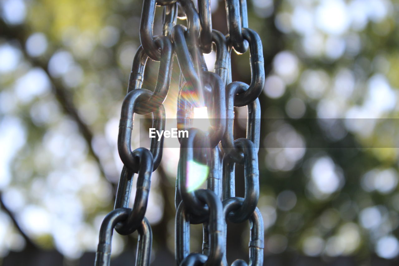 Close-up of chain hanging against trees