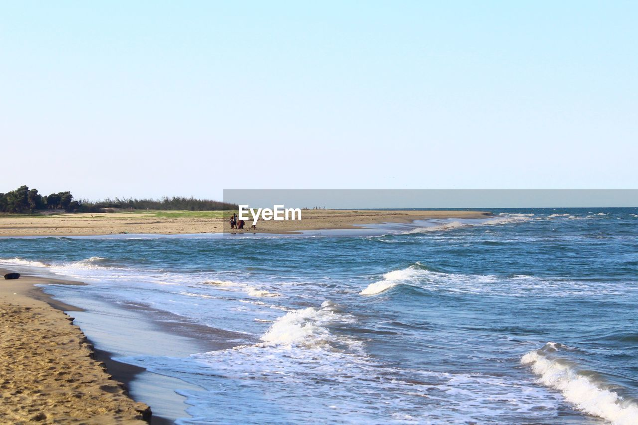 SCENIC VIEW OF SHORE AGAINST CLEAR SKY