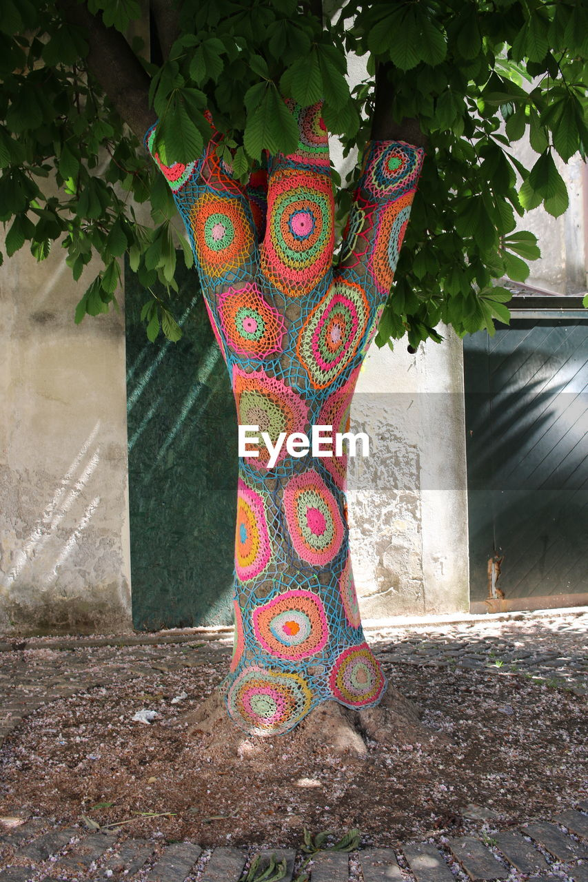 MULTI COLORED TREE AGAINST BUILT STRUCTURE