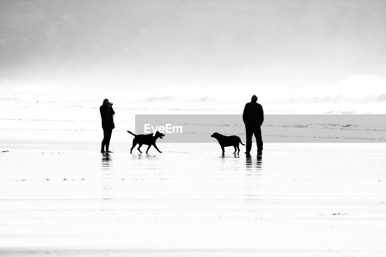 SILHOUETTE PEOPLE WALKING ON BEACH AGAINST SKY