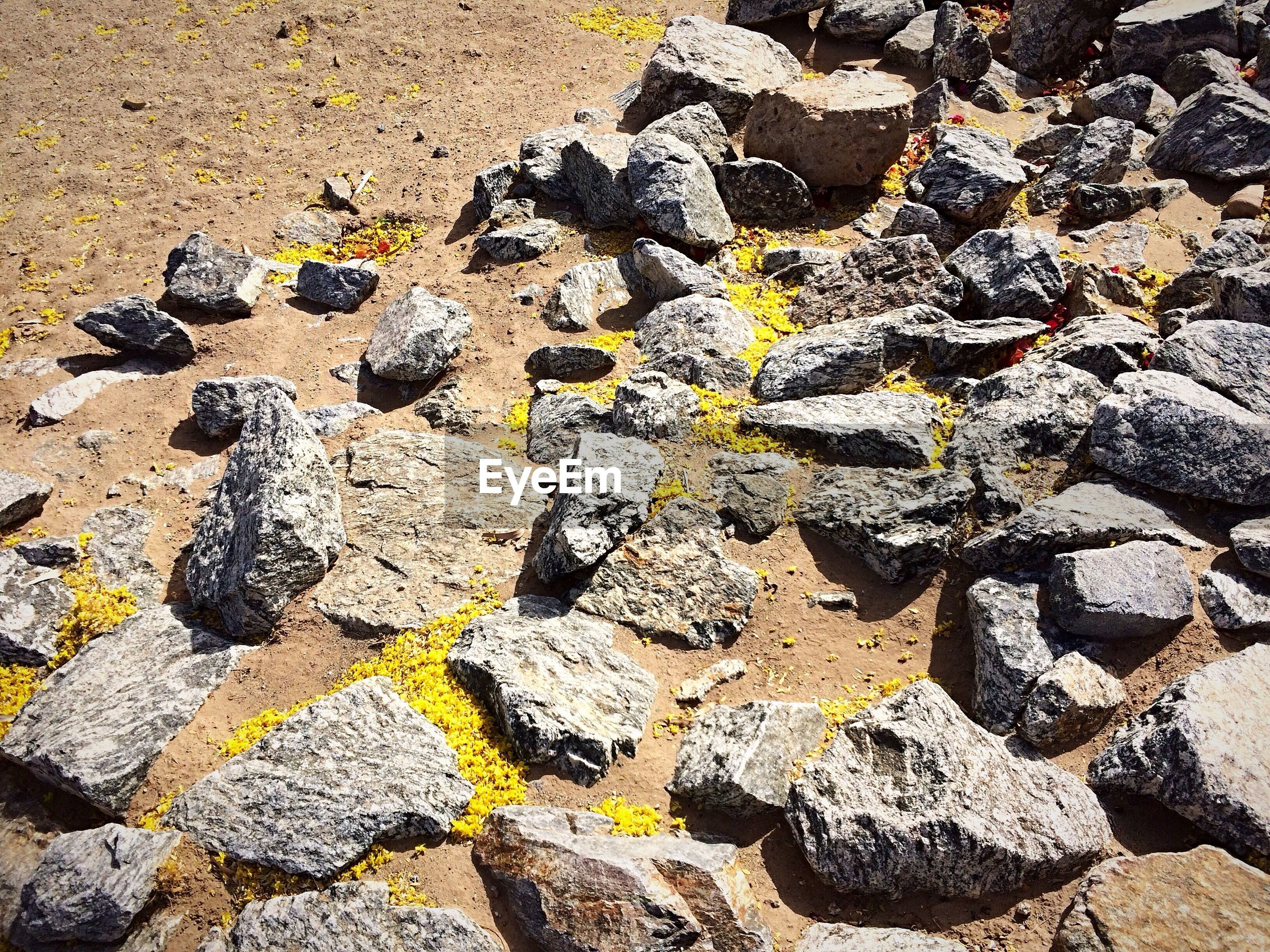 solid, rock, day, no people, nature, rock - object, textured, backgrounds, land, full frame, sunlight, high angle view, outdoors, rough, close-up, stone - object, field, yellow, pattern, black color, lichen