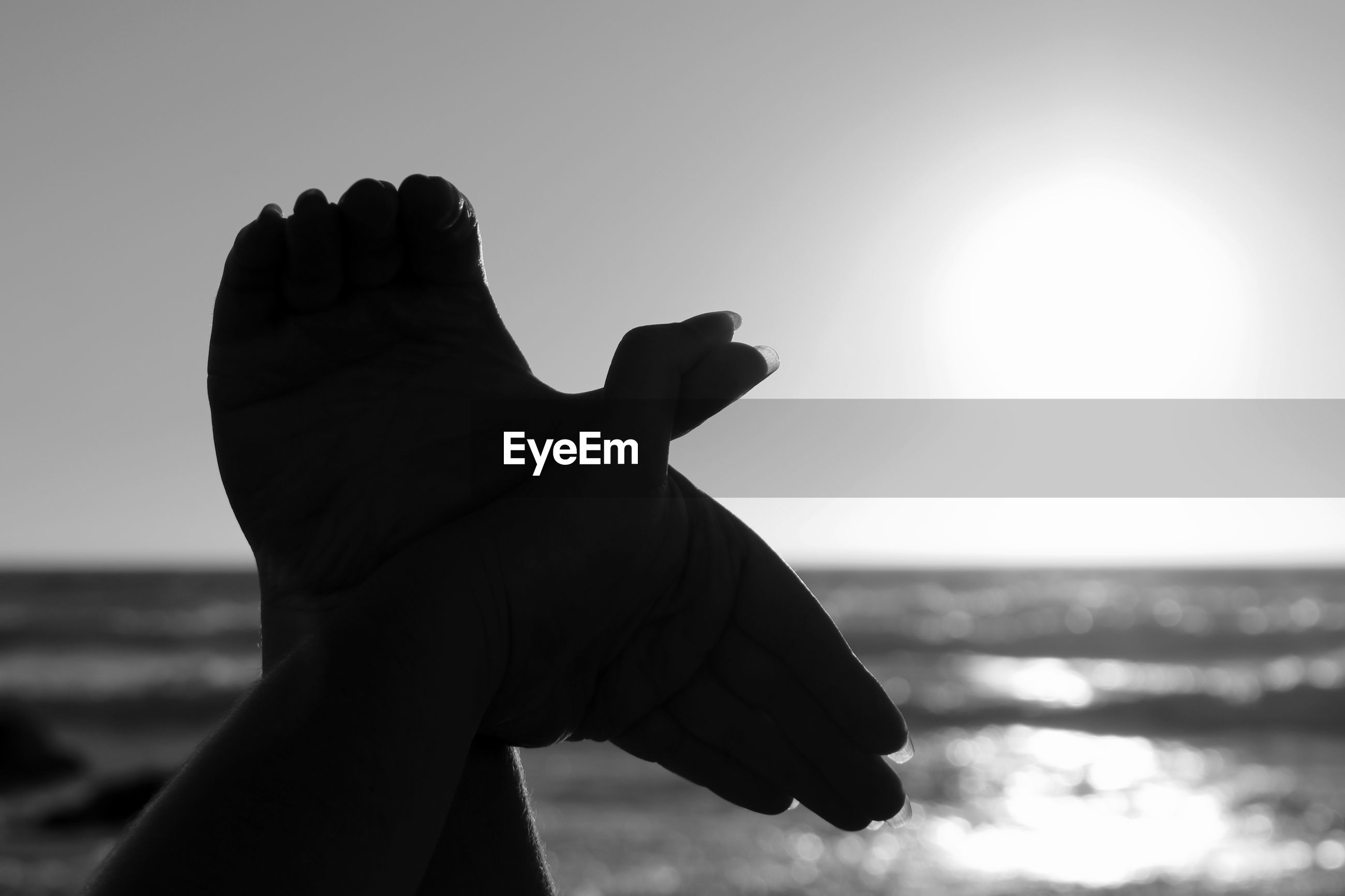 Cropped image of silhouette hands making bird sign against sky