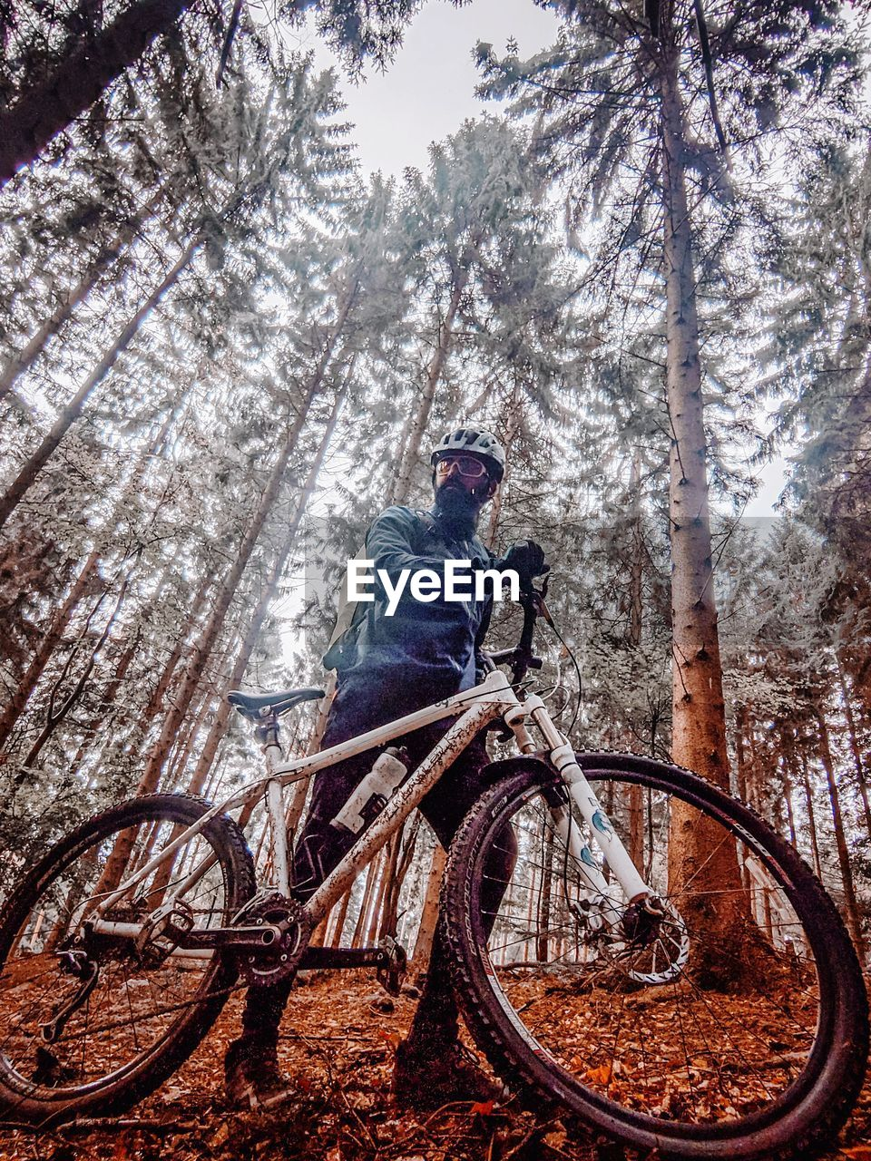 MAN RIDING BICYCLE ON TREE TRUNK