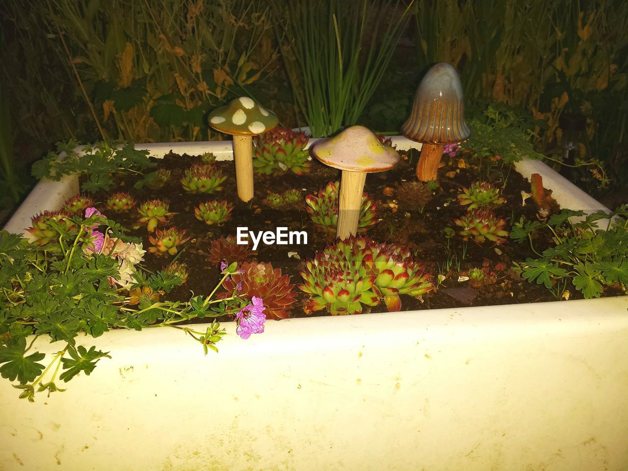 Artificial mushrooms and plants in garden