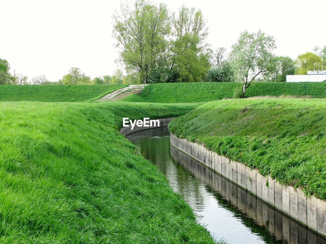 plant, grass, green color, tree, growth, nature, no people, day, tranquility, field, sky, footpath, beauty in nature, land, tranquil scene, water, landscape, park, outdoors, canal, hedge, garden path