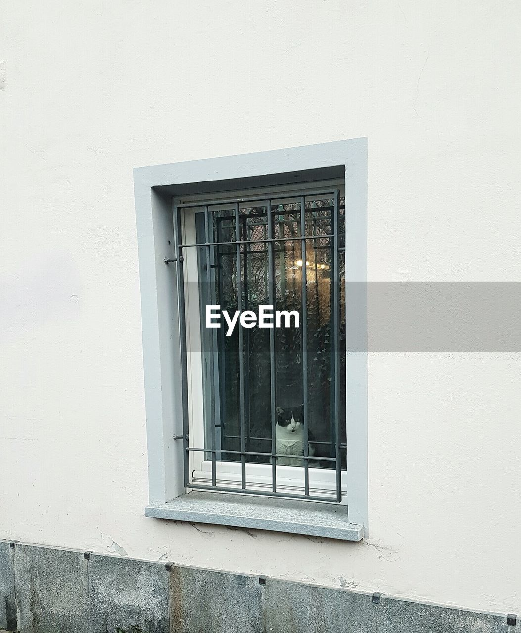 window, architecture, building exterior, built structure, no people, window sill, day, outdoors, security bar, close-up