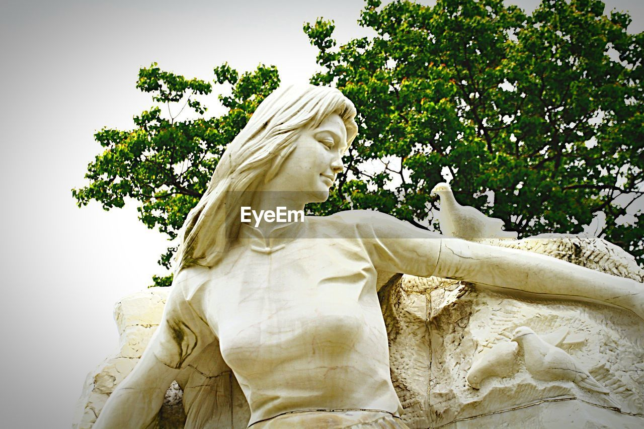 statue, sculpture, human representation, female likeness, tree, male likeness, low angle view, no people, beauty, nature, outdoors, day, blond hair, beauty in nature, sky