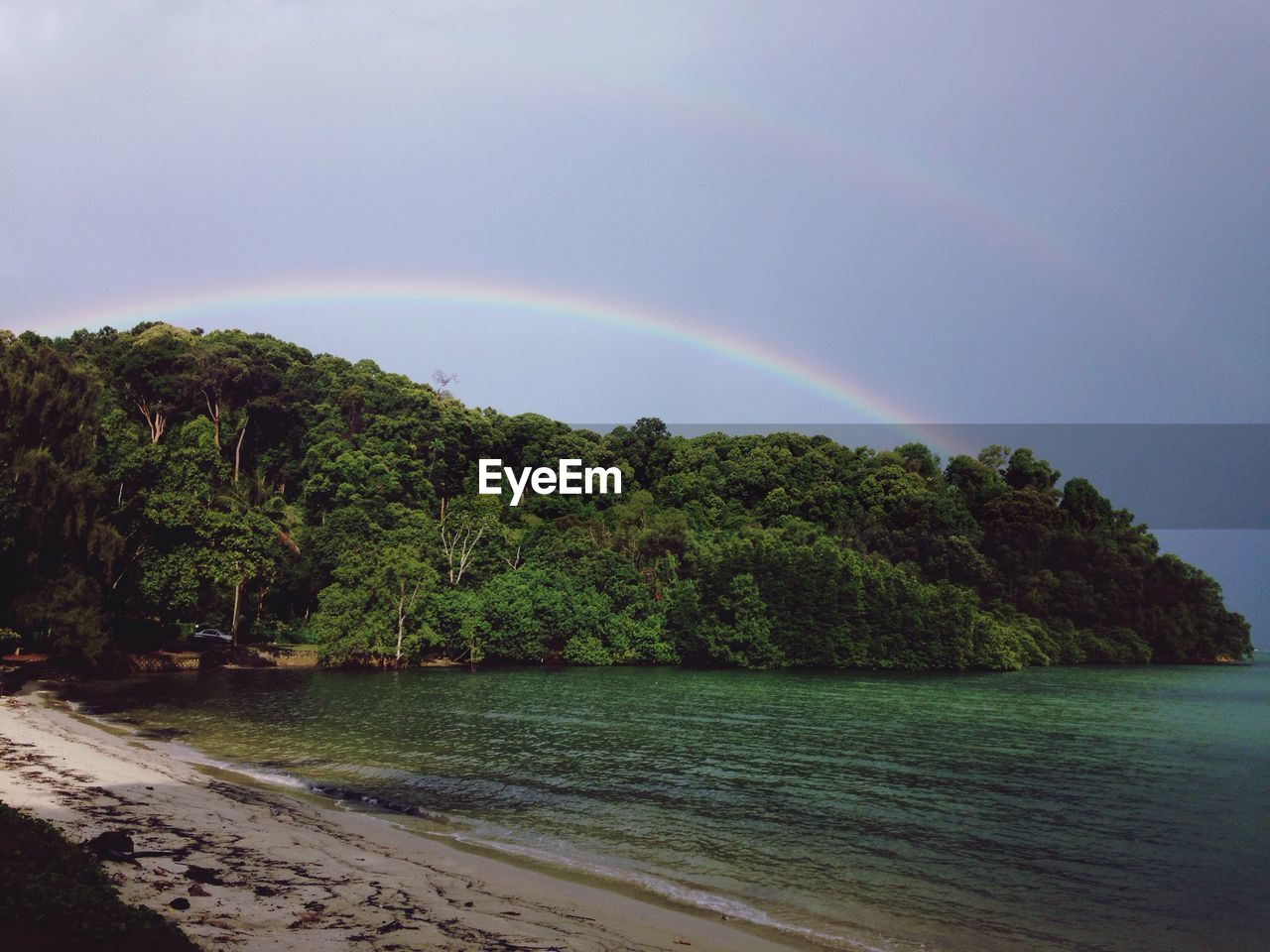 rainbow, double rainbow, beauty in nature, nature, idyllic, scenics, tranquility, no people, tranquil scene, water, day, outdoors, sea, tree, sky