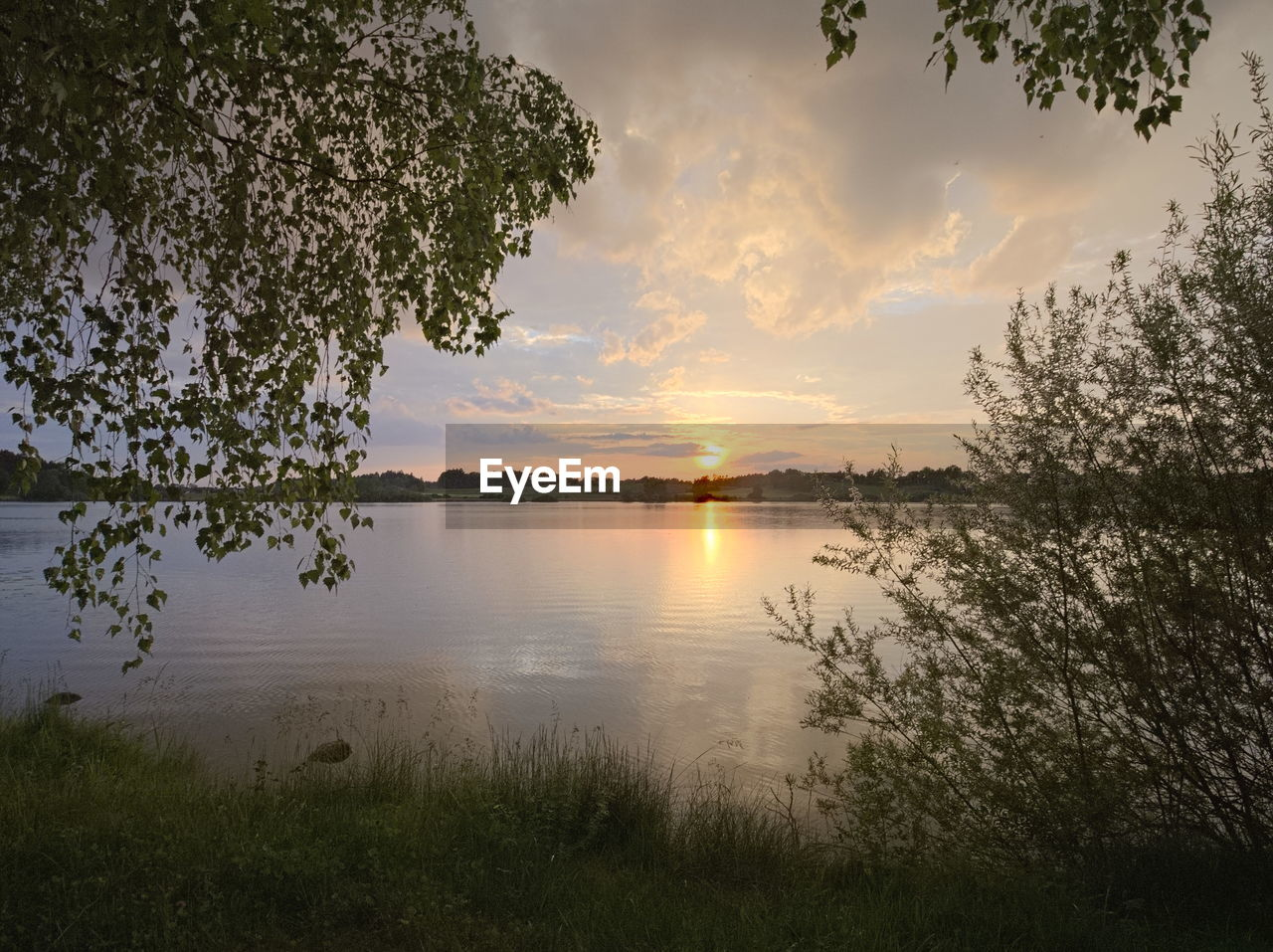 sky, tranquility, sunset, beauty in nature, plant, tranquil scene, water, scenics - nature, tree, cloud - sky, nature, reflection, lake, idyllic, no people, non-urban scene, growth, outdoors, land