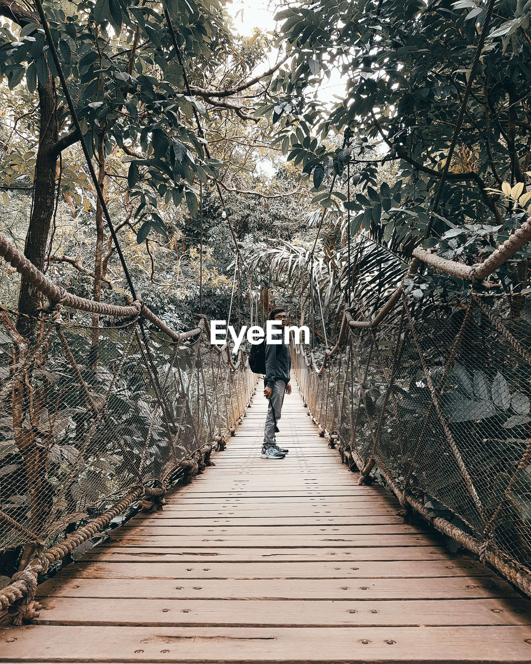 Side view of man standing on footbridge in forest