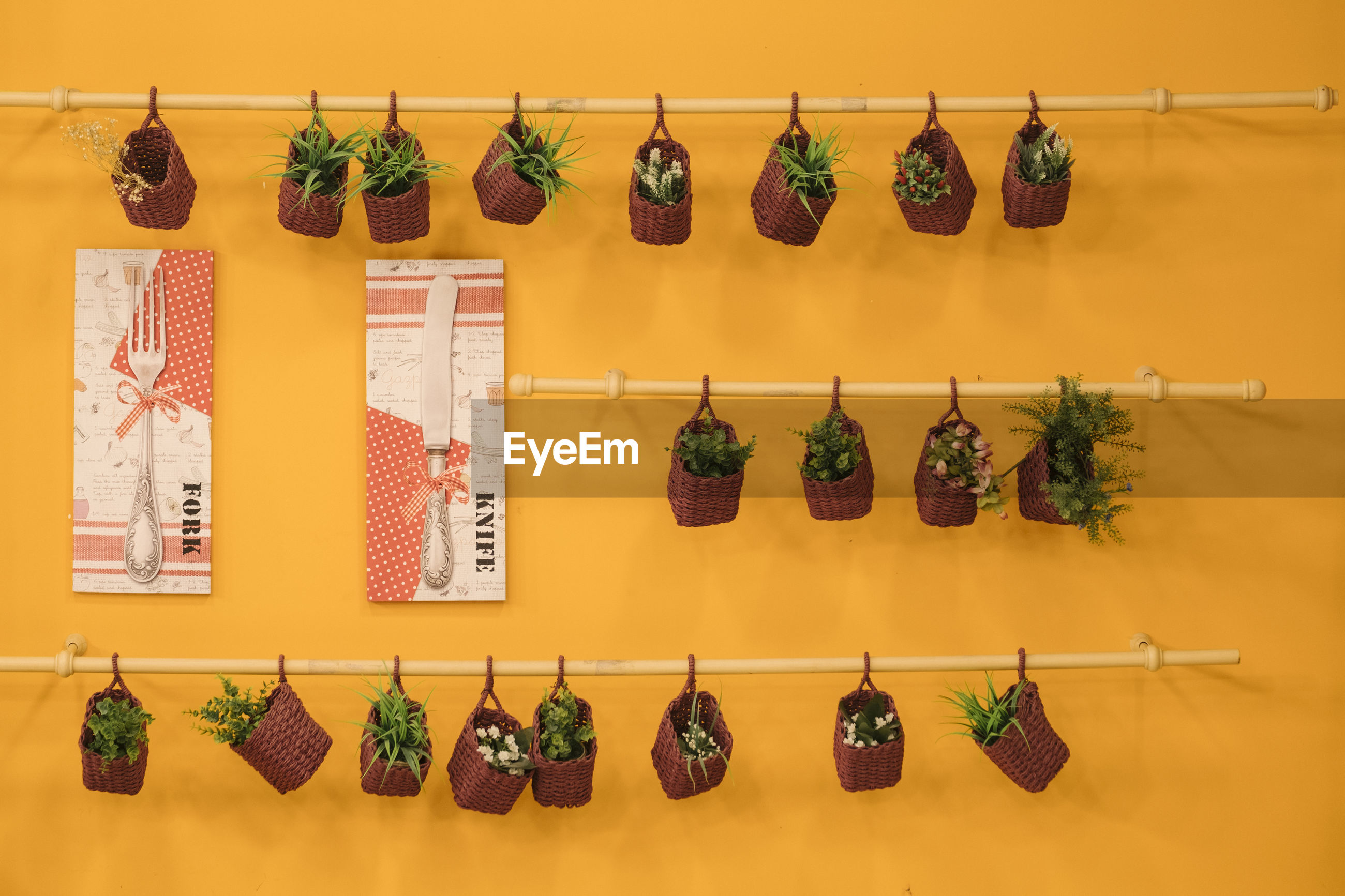 Potted plants hanging on metallic rods against yellow wall