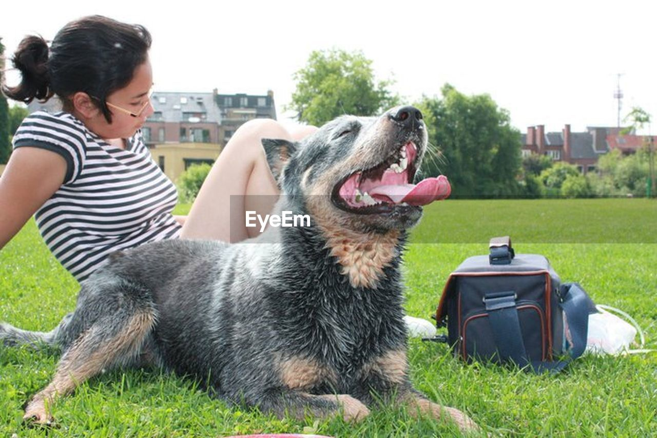 dog, grass, pets, one animal, lawn, front or back yard, one person, casual clothing, people, outdoors, one woman only, only women, happiness, adult, smiling, day, building exterior, domestic animals, adults only, friendship, sitting, tree, young adult, mammal, young women, one young woman only, animal themes, sky