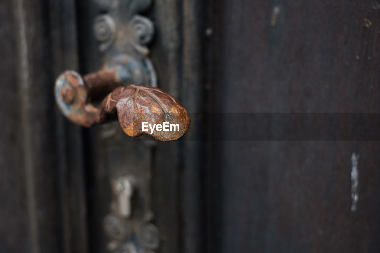 metal, rusty, close-up, no people, old, weathered, focus on foreground, door, day, decline, deterioration, outdoors, entrance, security, safety, selective focus, protection, run-down, wood - material, damaged, iron - metal, nail