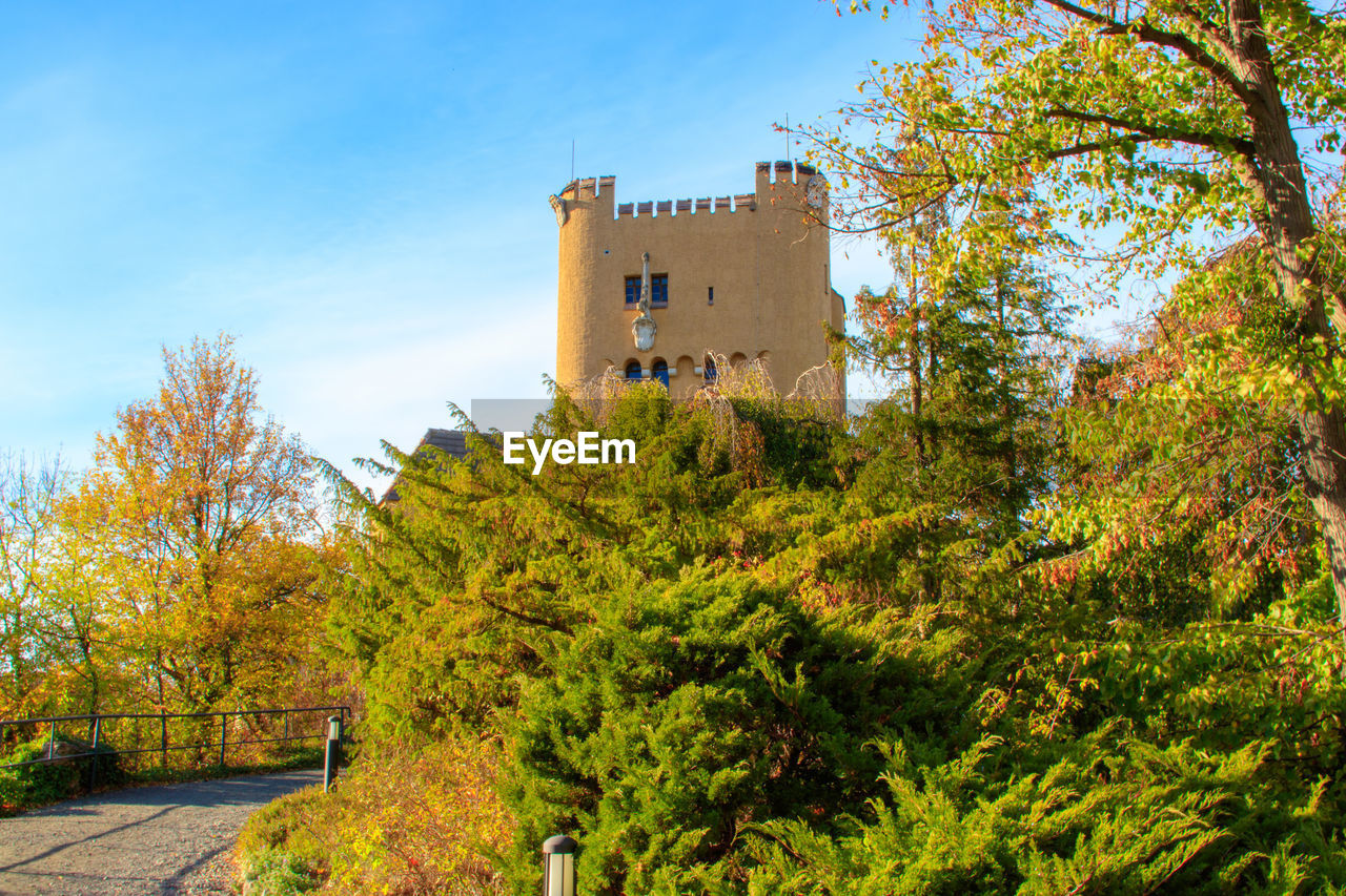 built structure, architecture, plant, tree, autumn, building, change, building exterior, nature, growth, sky, day, no people, leaf, outdoors, plant part, green color, history, sunlight, beauty in nature, fall