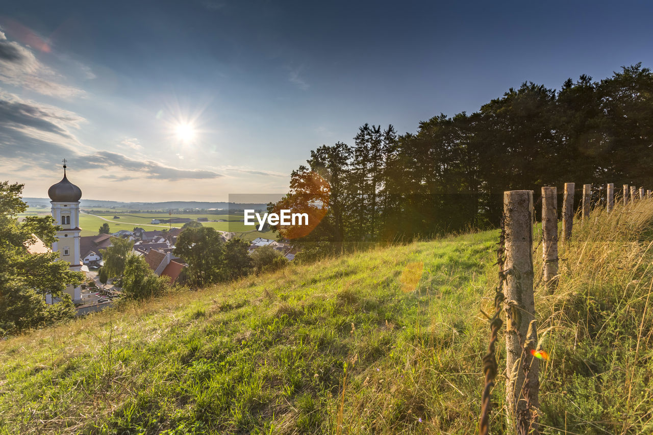 plant, sky, field, nature, land, beauty in nature, no people, environment, sunlight, tree, architecture, grass, growth, tranquility, landscape, tranquil scene, scenics - nature, security, built structure, day, sun, outdoors, lens flare, wooden post