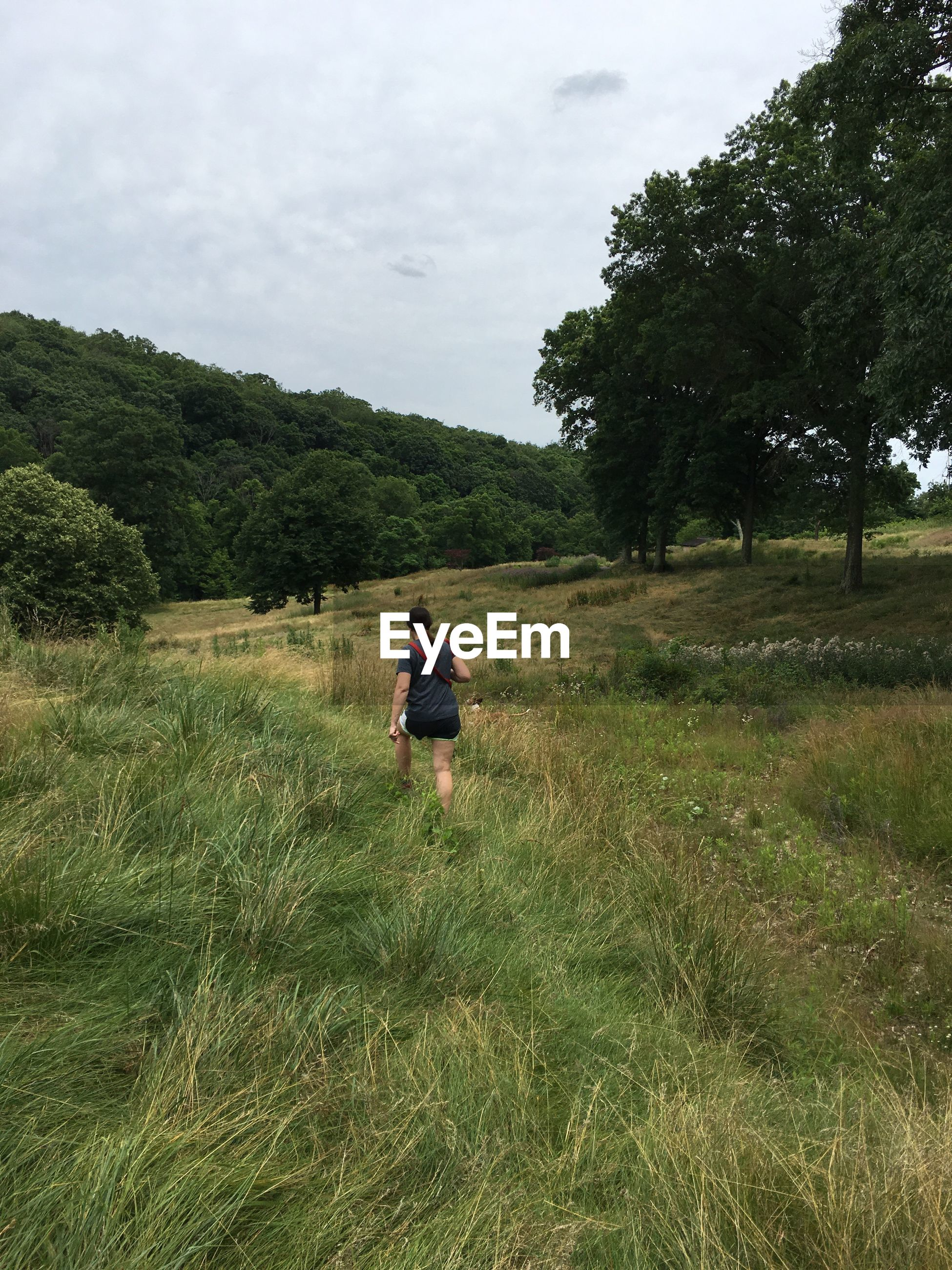 Rear view of woman hiking on grassy field against sky