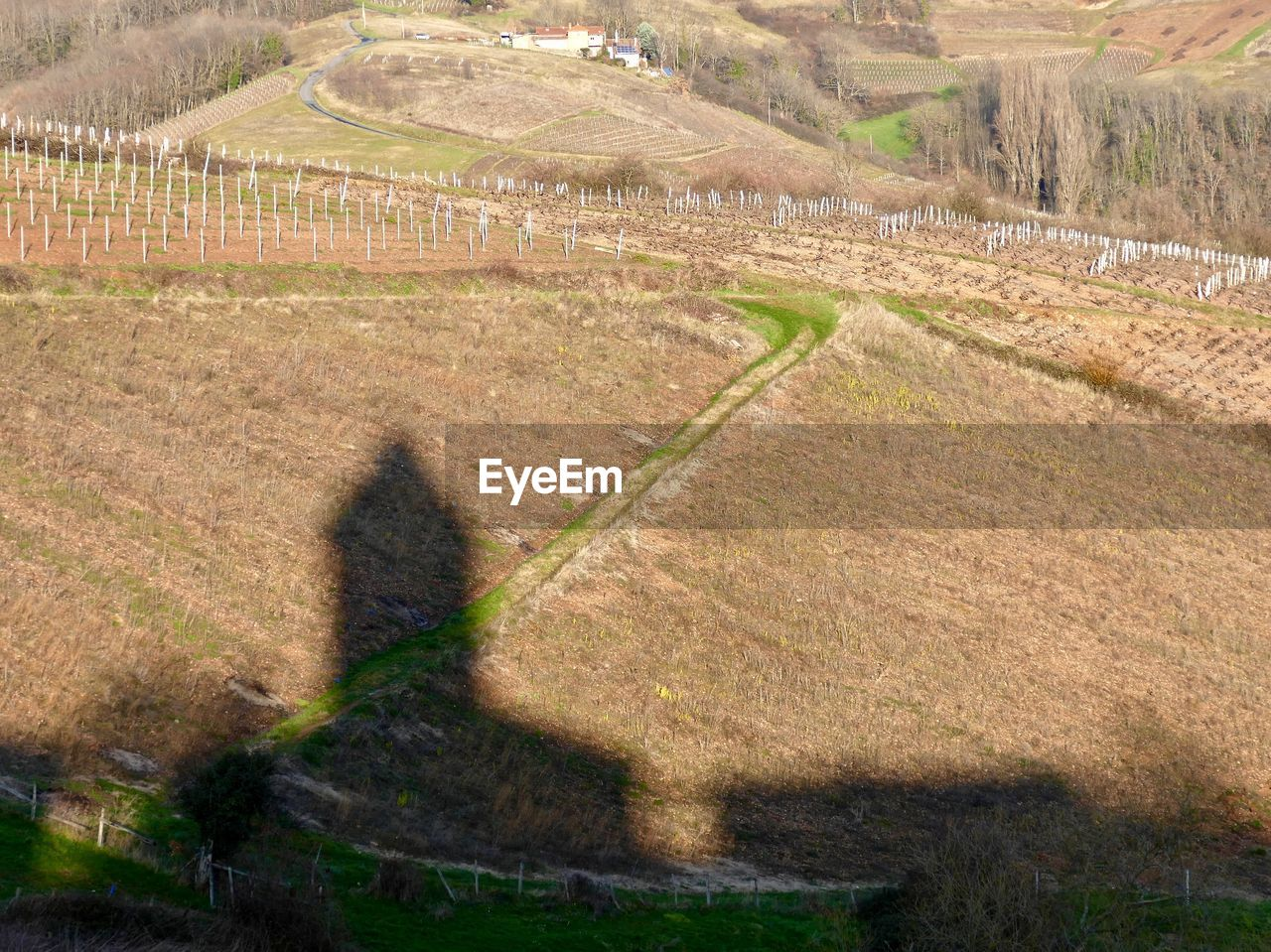 Building shadow on agricultural field