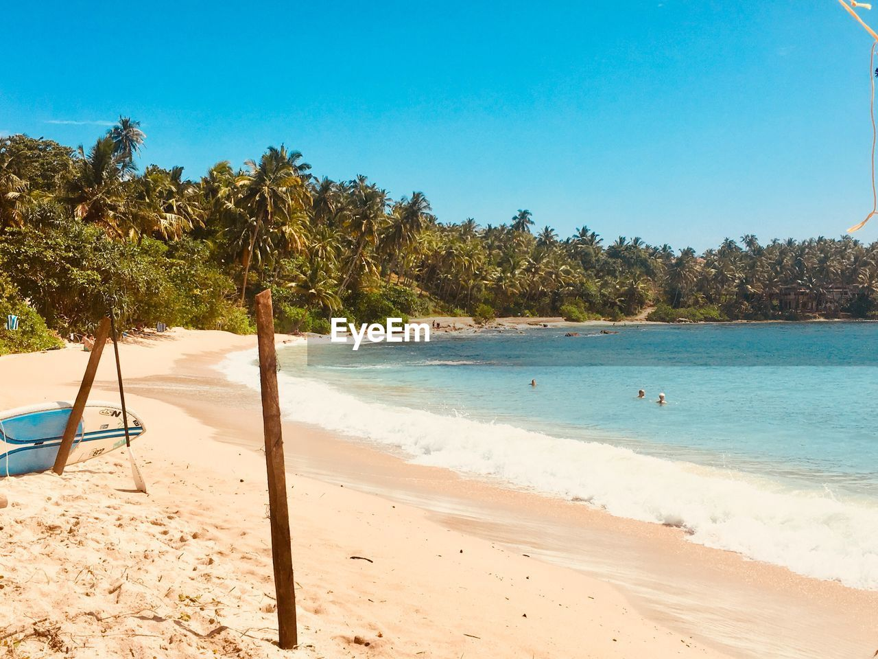 beach, sand, sea, tree, nature, shore, tranquil scene, scenics, beauty in nature, water, tranquility, clear sky, day, blue, no people, outdoors, summer, palm tree, sunlight, vacations, sky, horizon over water