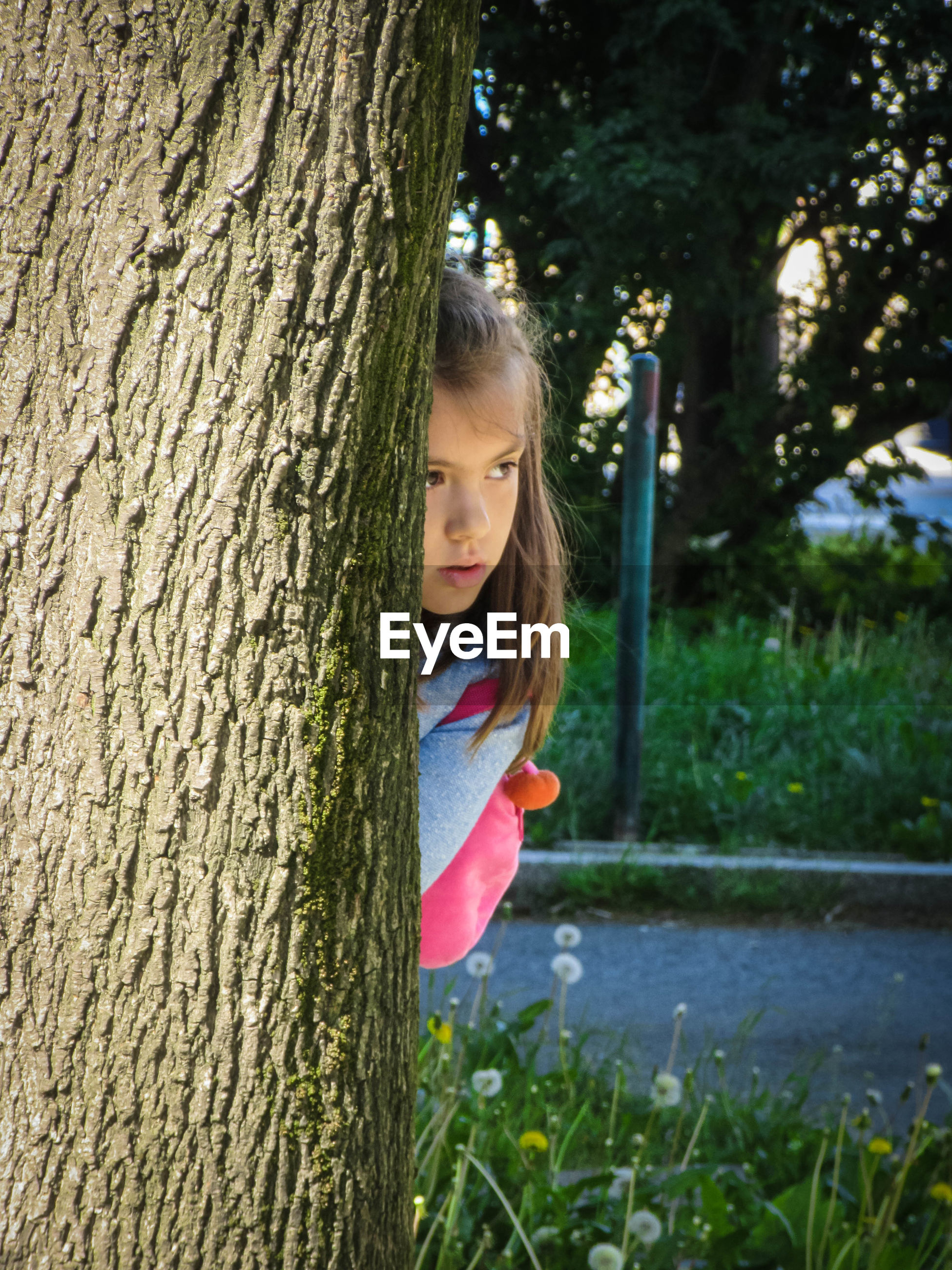Girl looking away while hiding behind tree trunk