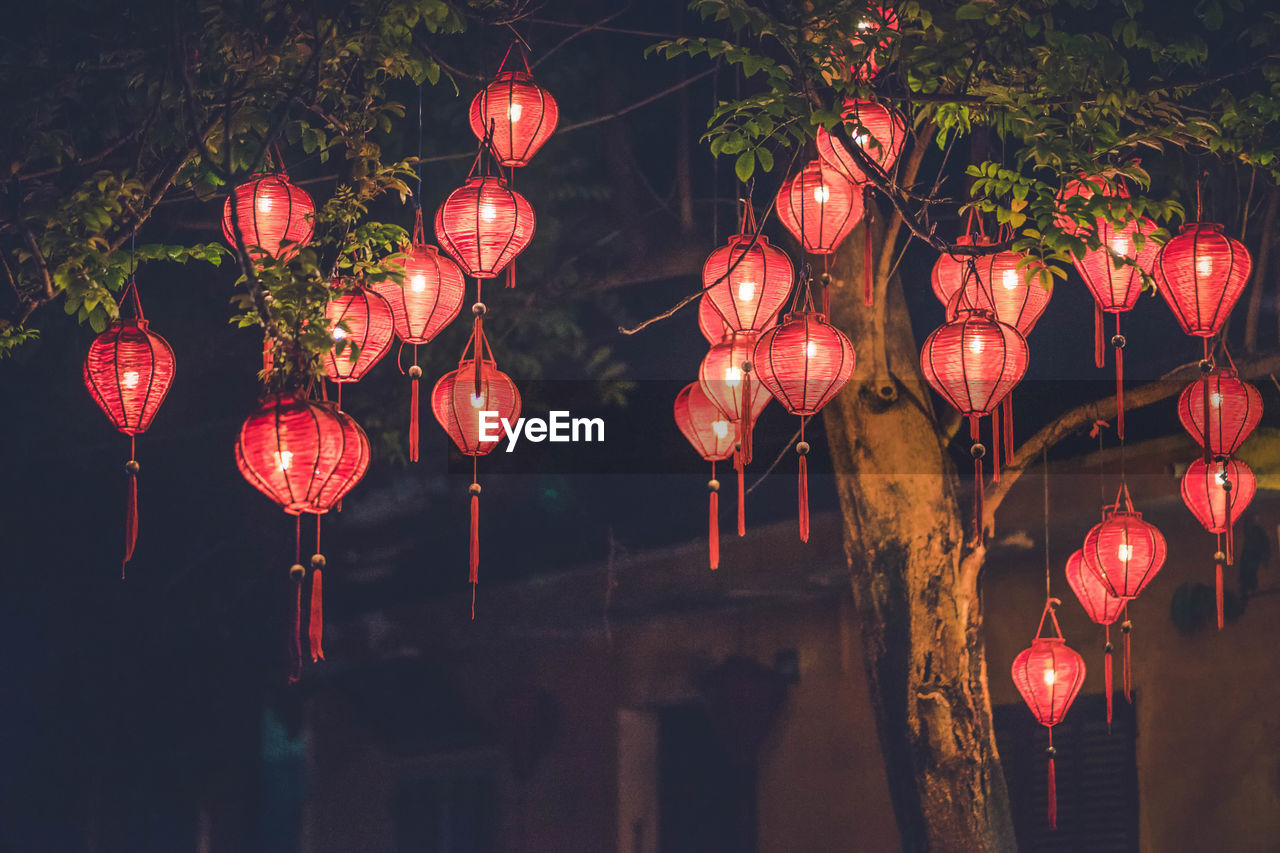 Low Angle View Of Illuminated Lanterns Hanging On Tree At Night