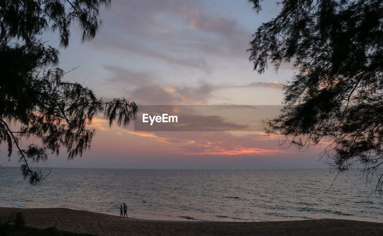 sunset, sea, tree, beauty in nature, scenics, beach, tranquil scene, nature, tranquility, water, sky, horizon over water, silhouette, cloud - sky, outdoors, no people, day