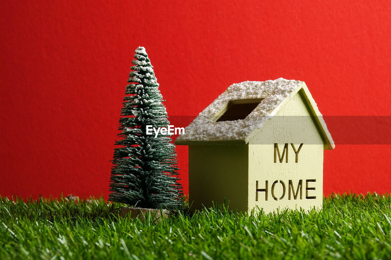 green color, grass, no people, architecture, built structure, day, indoors, growth, red, building exterior, nature, close-up