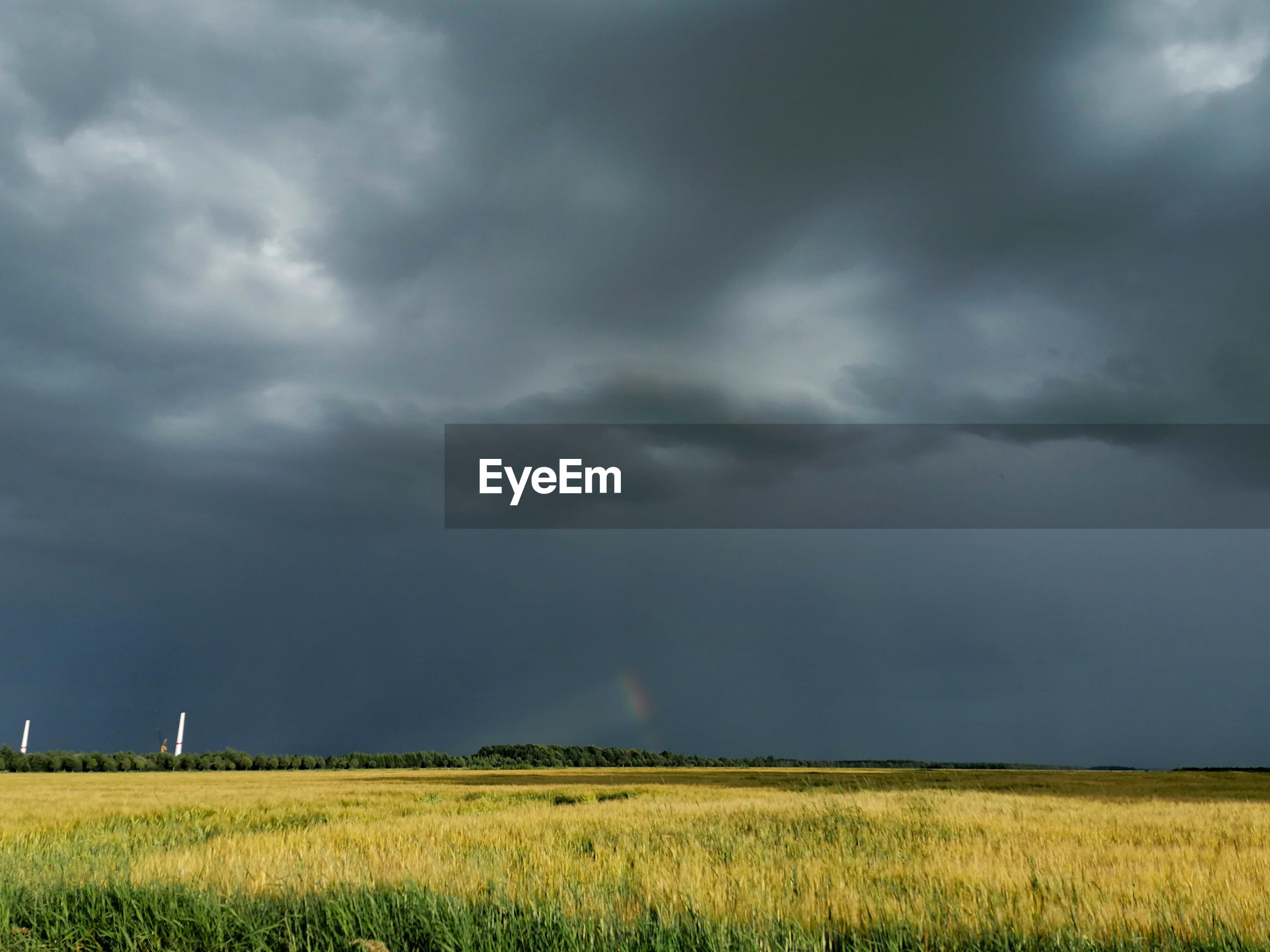 SCENIC VIEW OF STORM CLOUDS OVER FIELD