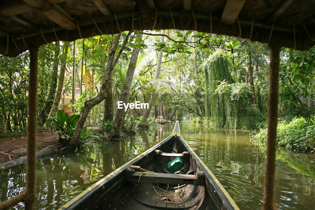 water, plant, tree, forest, nature, tranquility, nautical vessel, day, transportation, growth, reflection, beauty in nature, green color, architecture, tranquil scene, no people, built structure, land, outdoors, canal