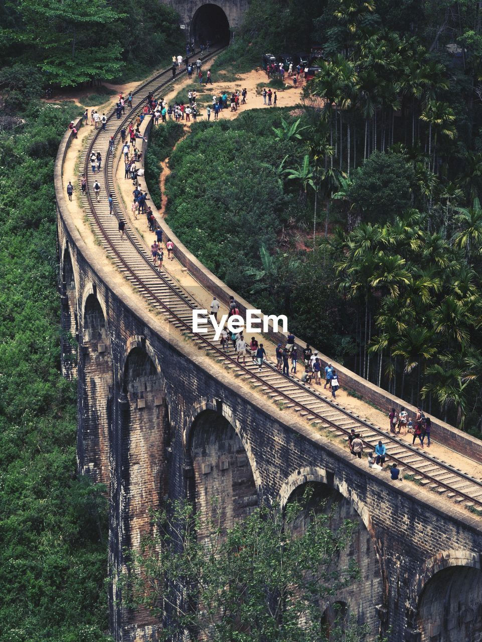 plant, tree, transportation, day, architecture, high angle view, group of people, built structure, nature, connection, bridge, bridge - man made structure, large group of people, travel, real people, crowd, road, outdoors, travel destinations