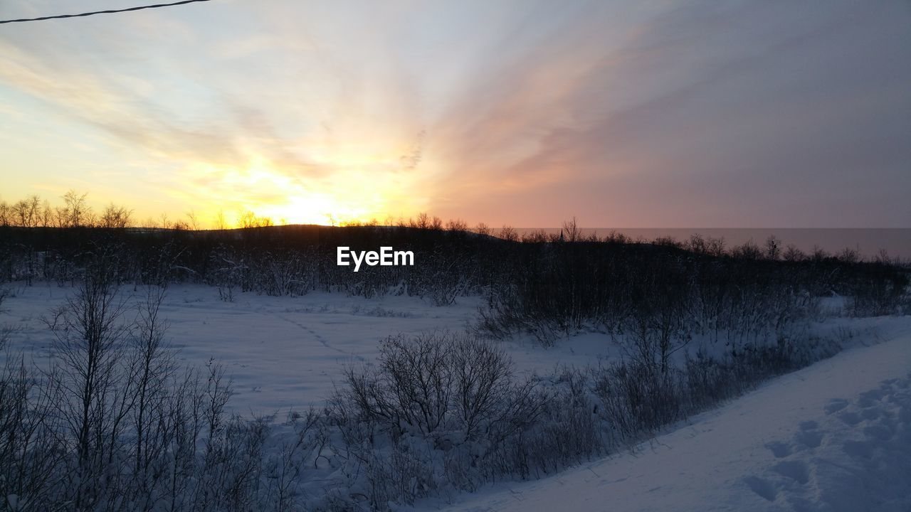 cold temperature, winter, snow, sunset, nature, beauty in nature, scenics, tranquility, tranquil scene, no people, weather, lake, sky, outdoors, frozen, landscape, bare tree, tree, water, day