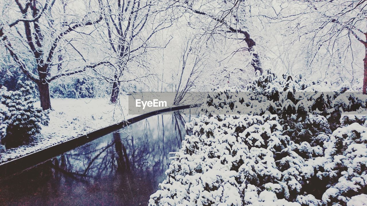 winter, snow, cold temperature, nature, weather, tree, beauty in nature, day, bare tree, tranquility, tranquil scene, outdoors, scenics, no people, frozen, water, branch, landscape, sky
