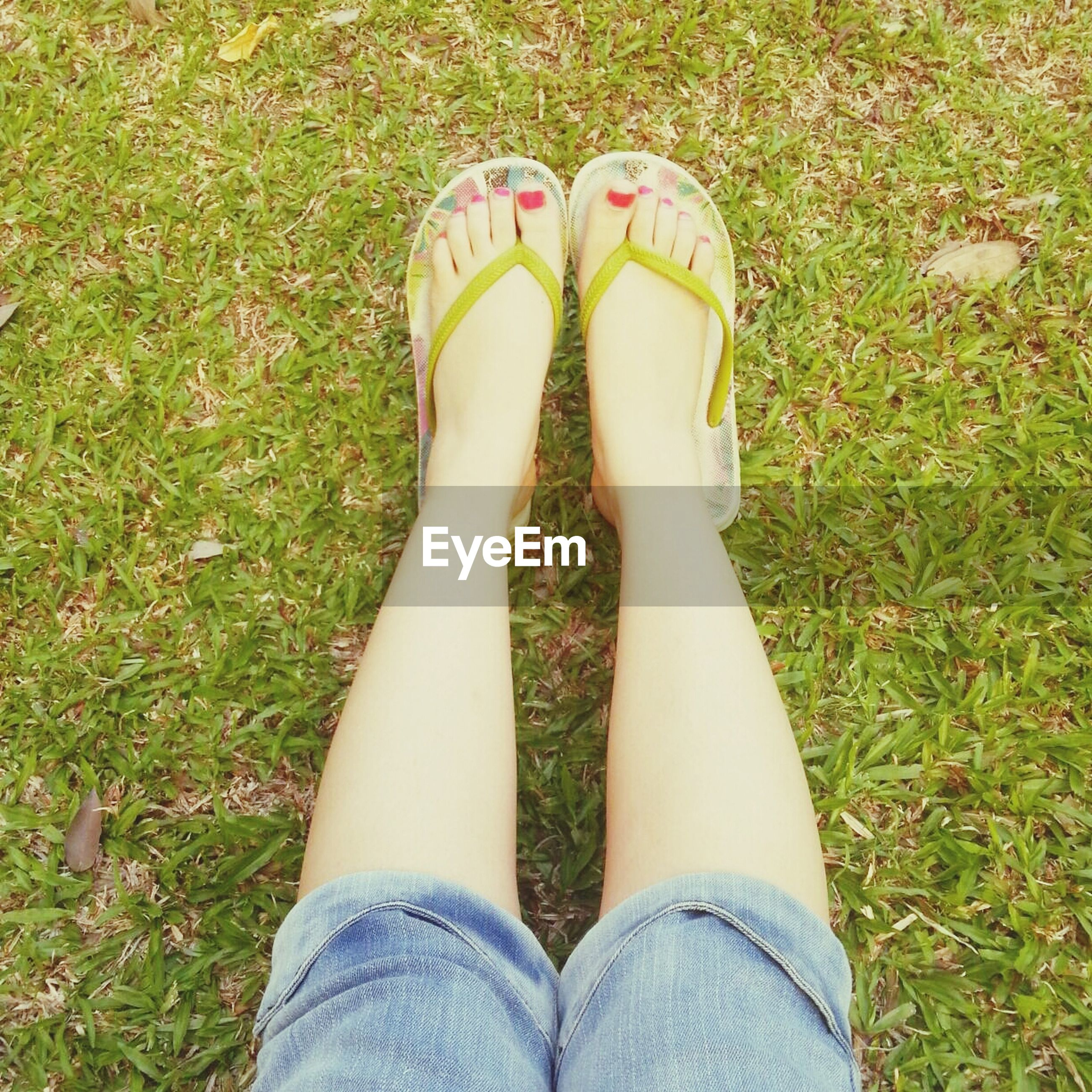 low section, person, shoe, grass, personal perspective, human foot, lifestyles, field, standing, high angle view, grassy, jeans, footwear, leisure activity, relaxation, men