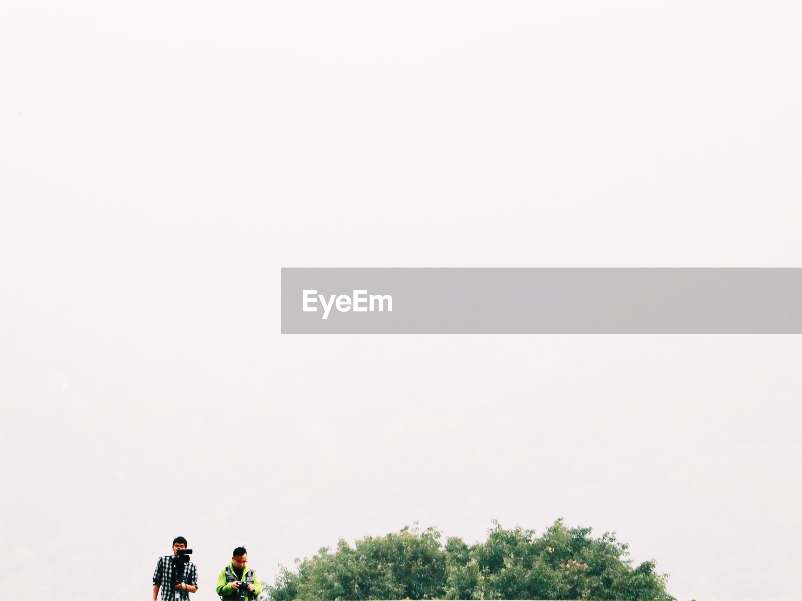 copy space, clear sky, lifestyles, men, tree, leisure activity, person, nature, growth, tranquility, beauty in nature, unrecognizable person, sky, walking, bicycle, outdoors, low angle view