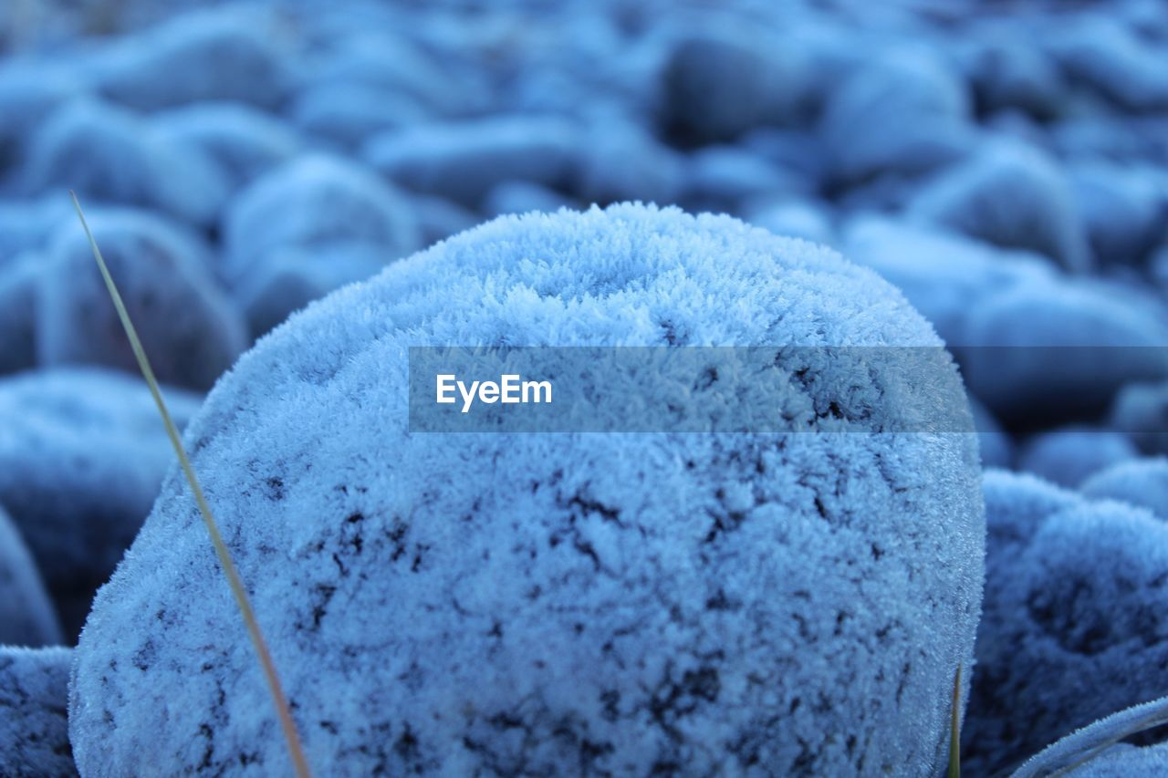 winter, close-up, cold temperature, snow, no people, focus on foreground, frozen, day, nature, blue, ice, selective focus, solid, land, white color, rock, outdoors, full frame, beauty in nature, pebble
