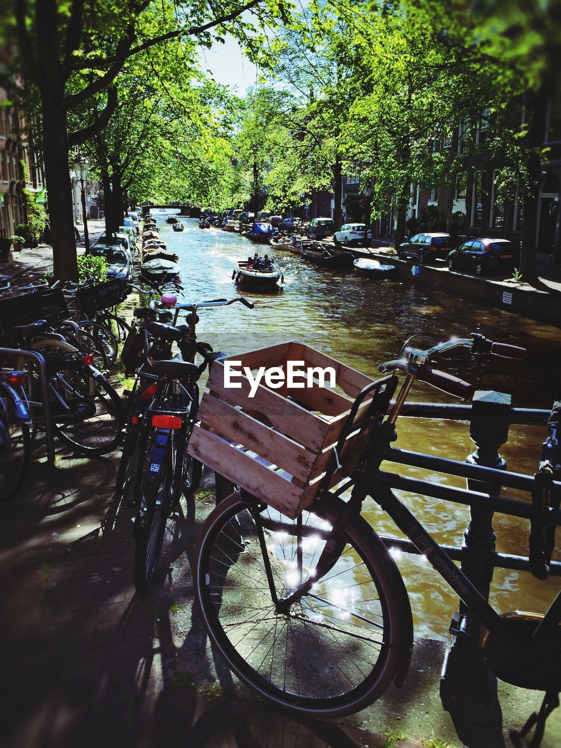 Bicycles parked by river amidst trees