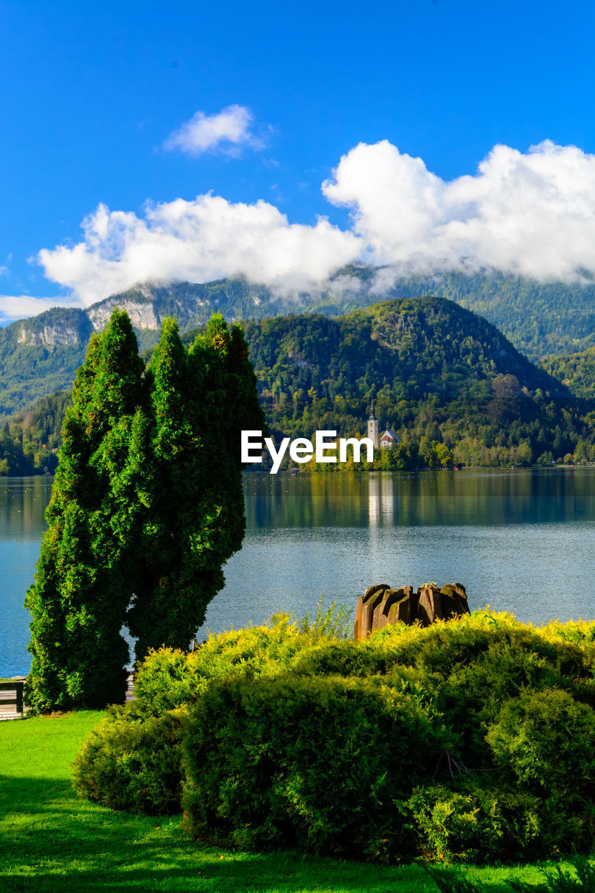 plant, tree, sky, mountain, water, cloud - sky, scenics - nature, beauty in nature, lake, nature, green color, tranquility, tranquil scene, day, no people, growth, mountain range, non-urban scene, grass, outdoors