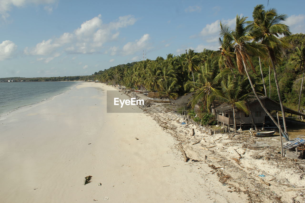 beach, sky, land, water, palm tree, tree, sea, nature, sand, plant, tropical climate, cloud - sky, tranquility, scenics - nature, beauty in nature, tranquil scene, day, no people, growth, outdoors, coconut palm tree