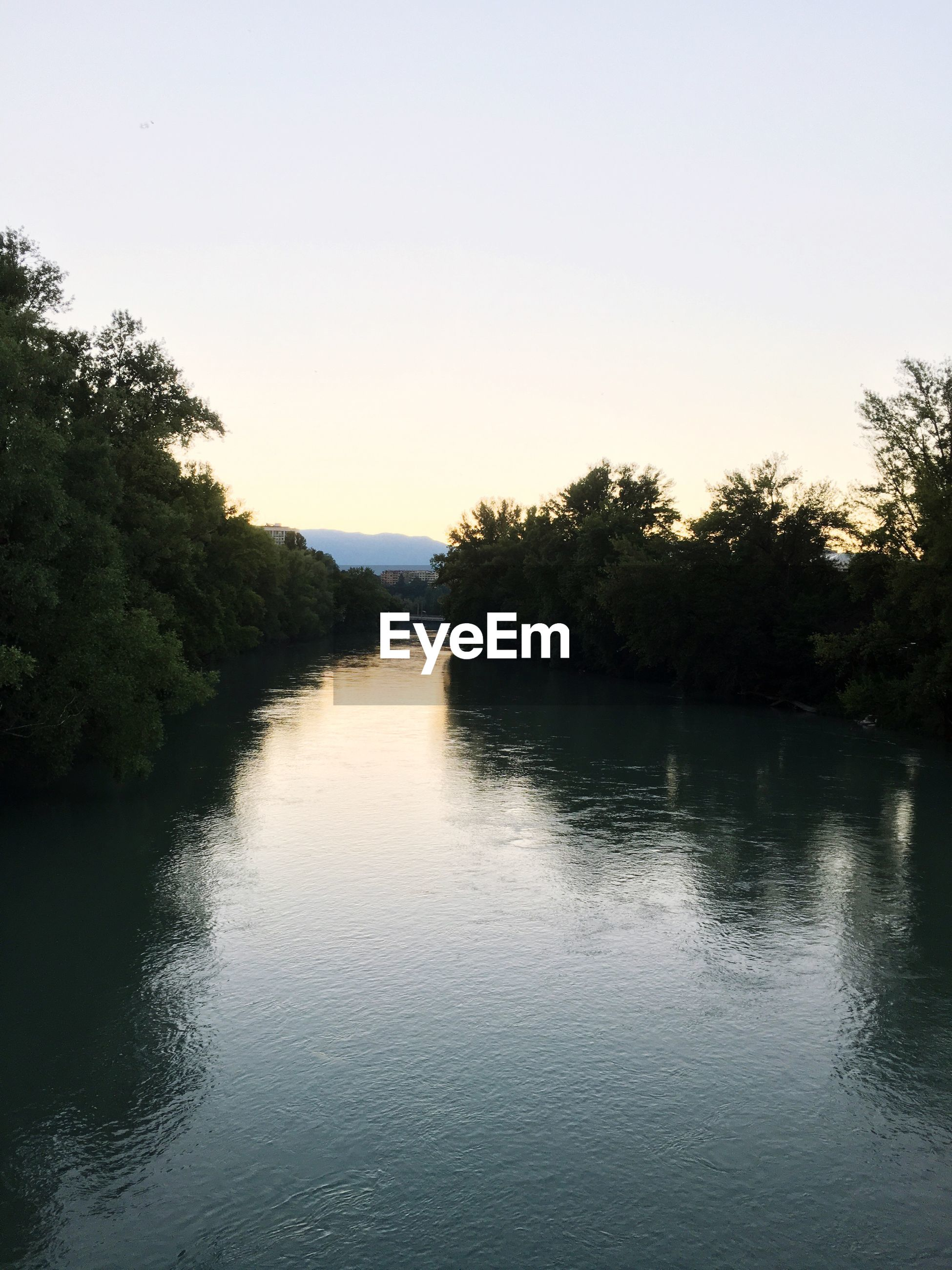 RIVER AMIDST SILHOUETTE TREES AGAINST CLEAR SKY