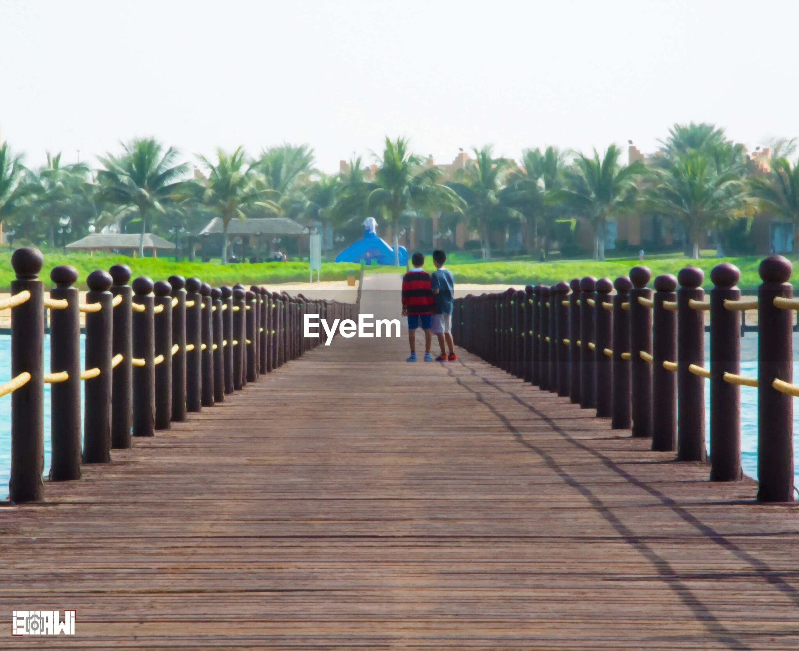 rear view, walking, full length, lifestyles, railing, leisure activity, the way forward, tree, men, person, clear sky, fence, footbridge, wood - material, boardwalk, pier, diminishing perspective, day