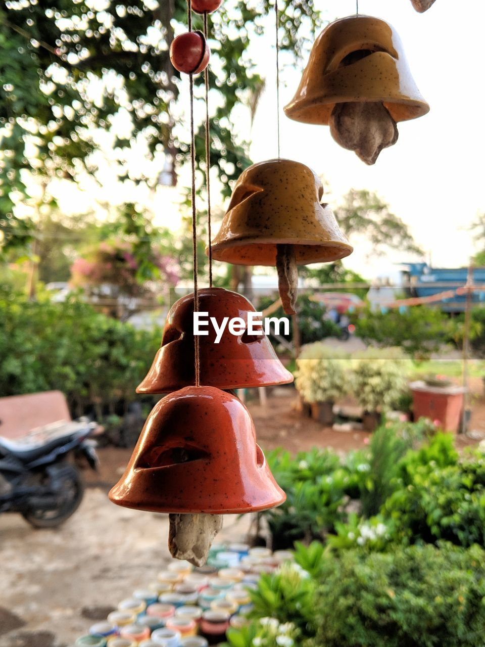 focus on foreground, hanging, no people, plant, nature, day, close-up, outdoors, tree, bell, lighting equipment, growth, hat, metal, sunlight, still life, creativity, fungus, food, art and craft, electric lamp