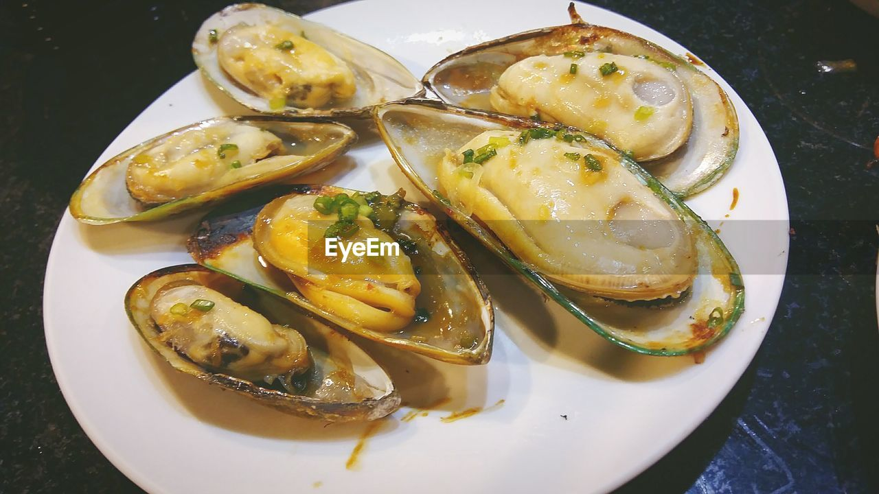 High angle view of oysters in plate