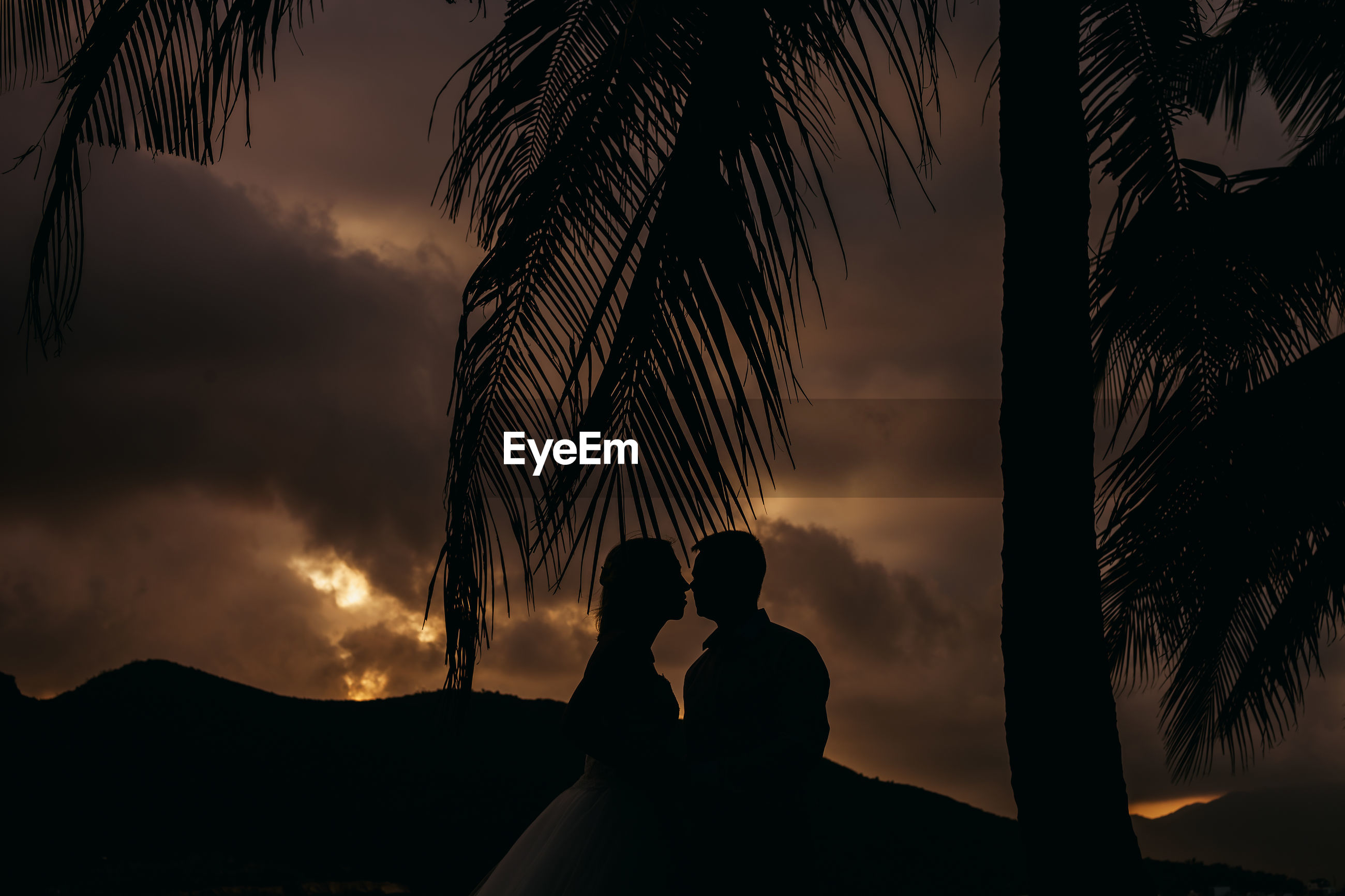 Silhouette couple kissing by palm tree against sky during sunset