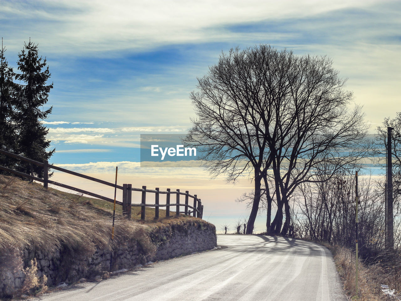 sky, tree, cloud - sky, road, bare tree, direction, the way forward, plant, nature, transportation, no people, day, railing, scenics - nature, outdoors, tranquility, tranquil scene, footpath, barrier, beauty in nature, long