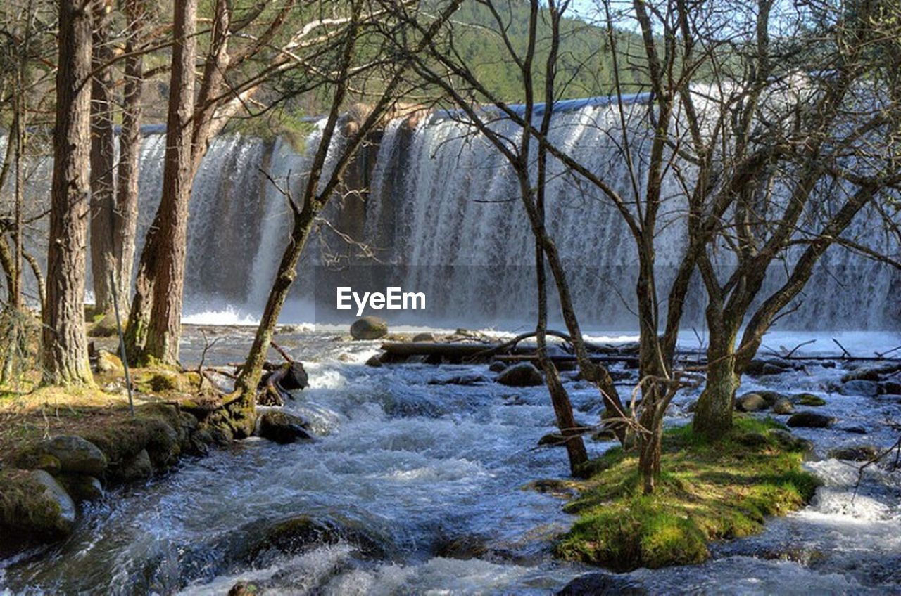 nature, beauty in nature, water, tree, motion, scenics, tranquil scene, tranquility, sea, no people, outdoors, forest, day, waterfall, branch, power in nature, wave, landscape, sky