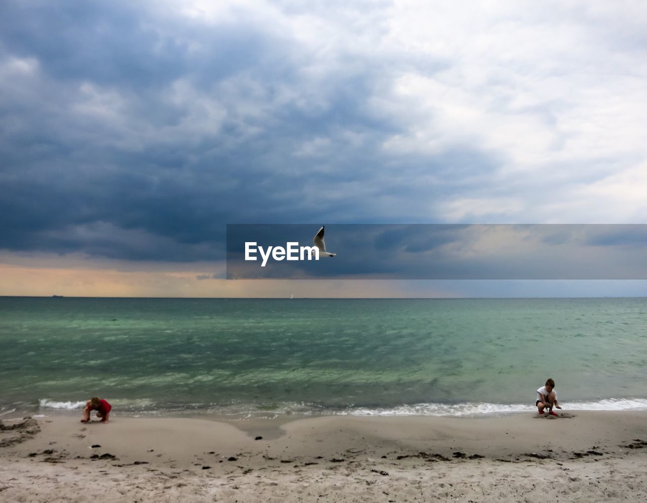 Black-headed seagull flying over kids playing on shore against cloudy sky